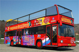 Moyocci Sightseeing Bus