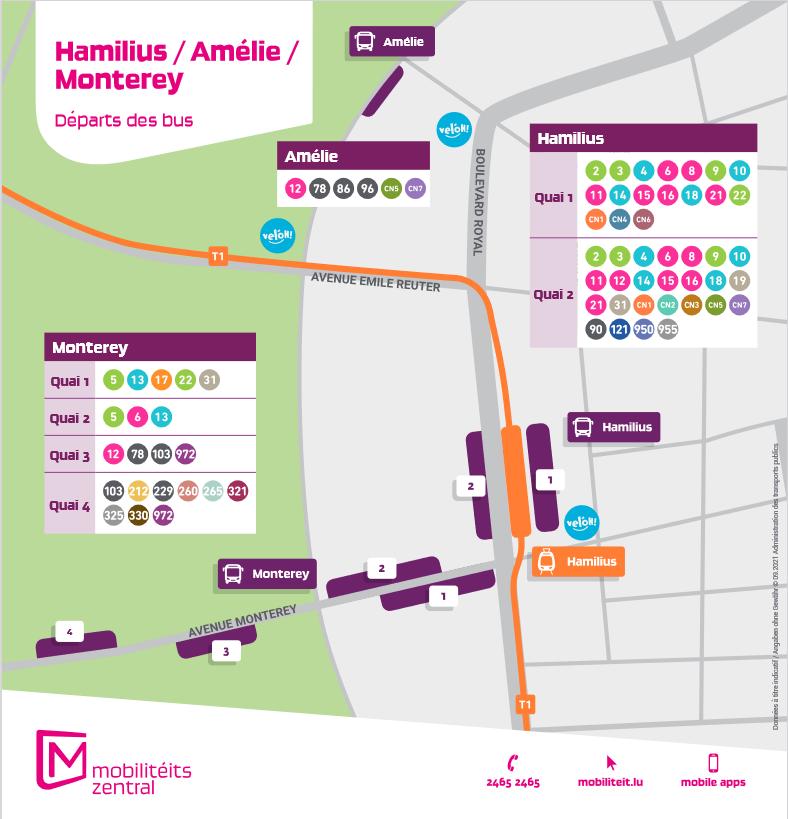 Hamilius / Monterey